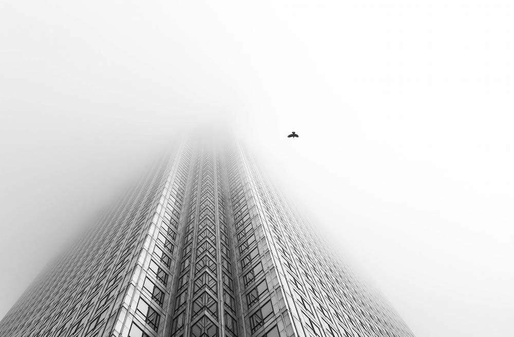 « Free Bird », Londres, Angleterre, par Chaitanya desrousseaux