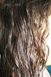 gel-de-lin-cheveux2