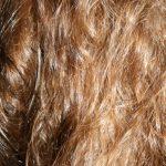 Le lait d'avoine, une routine capillaire d'excellence pour cheveux secs et cuir chevelu sensibilisé. Masque capillaire avoine aux huiles fortifiantes essentielles et végétales. Cheveux bouclés et frisés, soin gainant et lissant. Cosmétique maison home made green Fabriquer soi-même sa crème d'avoine, miel, huile essentielle de carotte, ricin, nigelle, protéines de soie, huile de brocoli