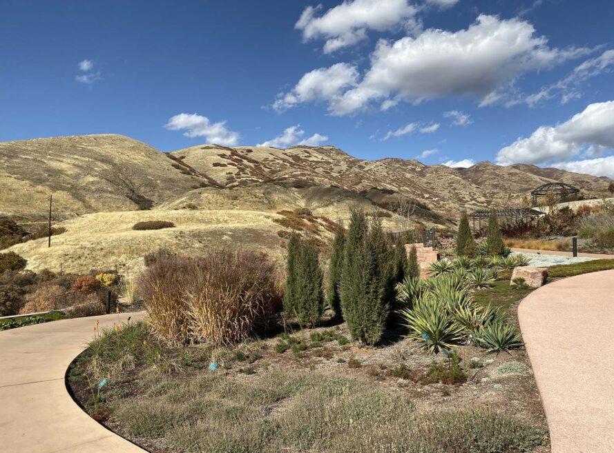 un paysage d'un sentier pédestre à travers un jardin avec des buissons verts. en arrière-plan il y a une montagne / colline
