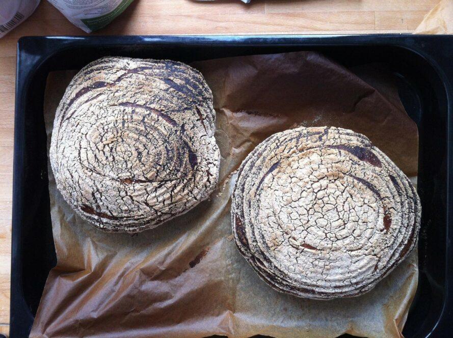 deux pains au levain frais sur une plaque à pâtisserie en métal