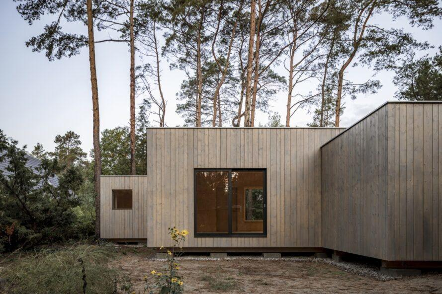 maison cube avec extérieur en bois