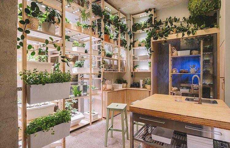 Maison durable remplie de plantes