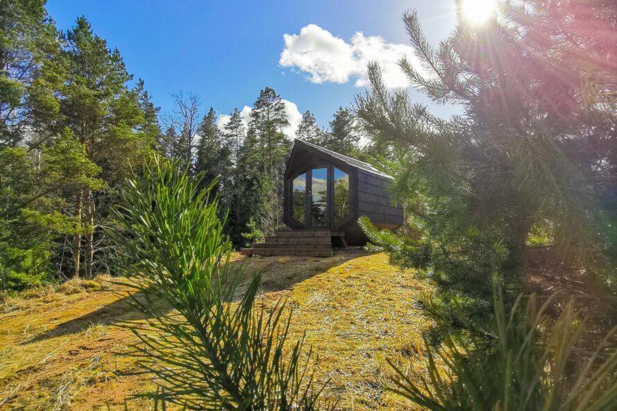 cabane en bois avec porte vitrée entourée d'une forêt