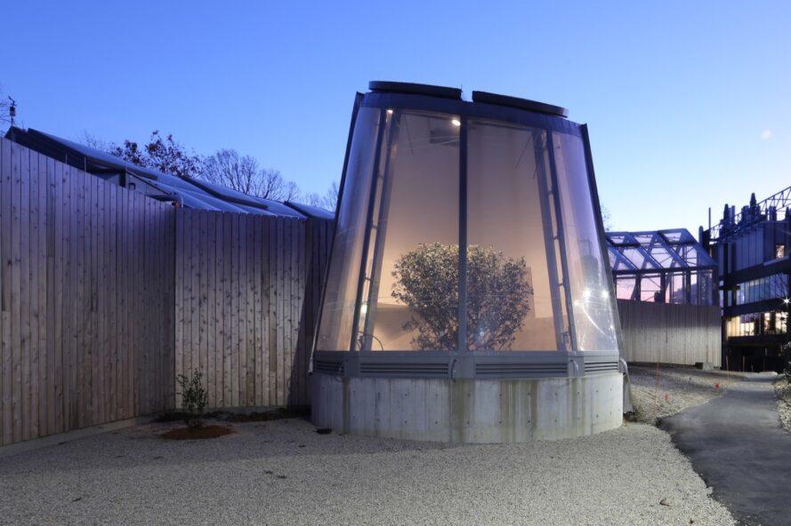 structure arrondie avec paroi en verre révélant un grand arbre poussant à l'intérieur