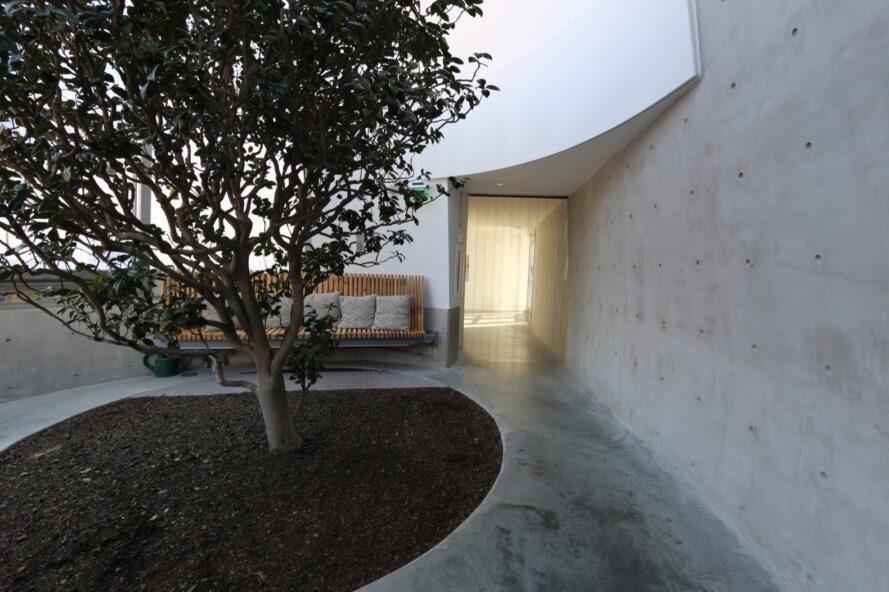 chambre avec murs en béton, un banc en bois et un arbre poussant au centre de la pièce