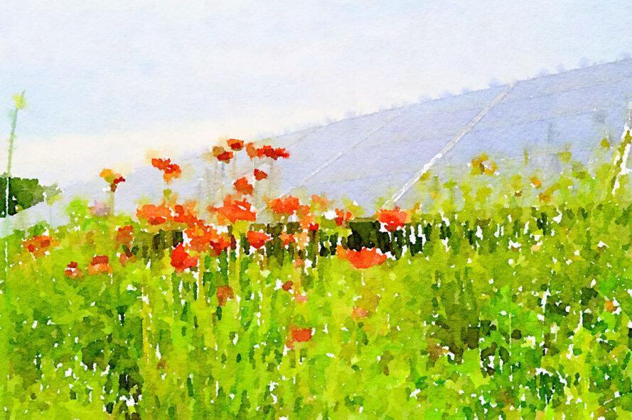 une peinture d'un champ vert avec des fleurs rouges entourant une rangée de panneaux solaires