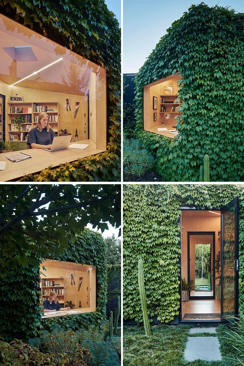 Un petit bureau d'arrière-cour pour un écrivain est recouvert de lierre de Boston et possède une grande baie vitrée.