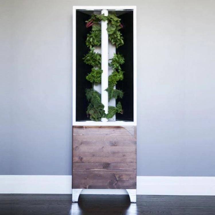 Jardin intérieur vertical