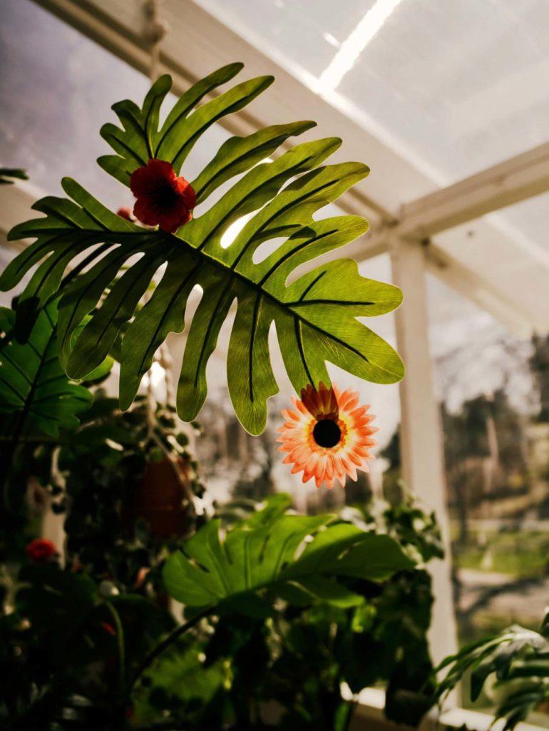La `` nature cosmique '' de Yayoi Kusama parsemée d'un jardin du Bronx