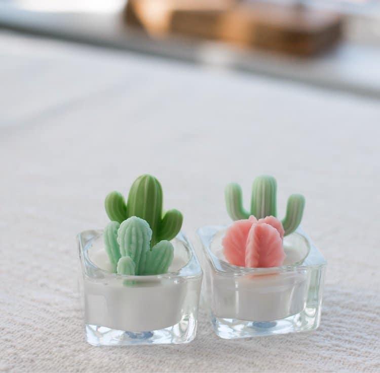Décor de cactus
