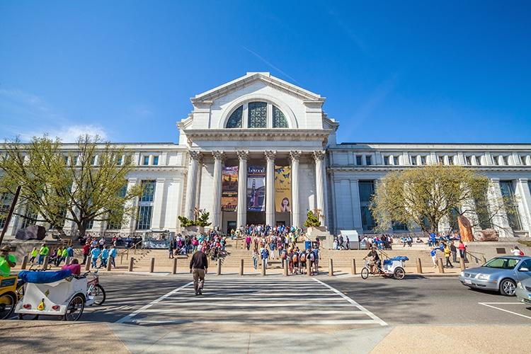 Smithsonian Museum of Natural History à Washington, DC