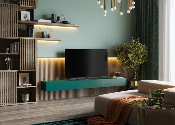 Téléviseurs Loewe bild i